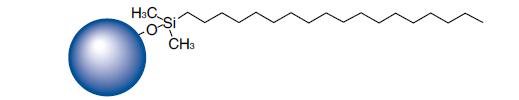 Amino Acid HPLC Column